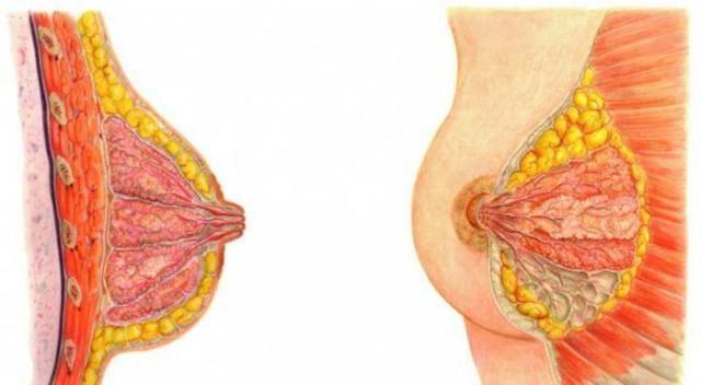 7 проблем при грудном вскармливании