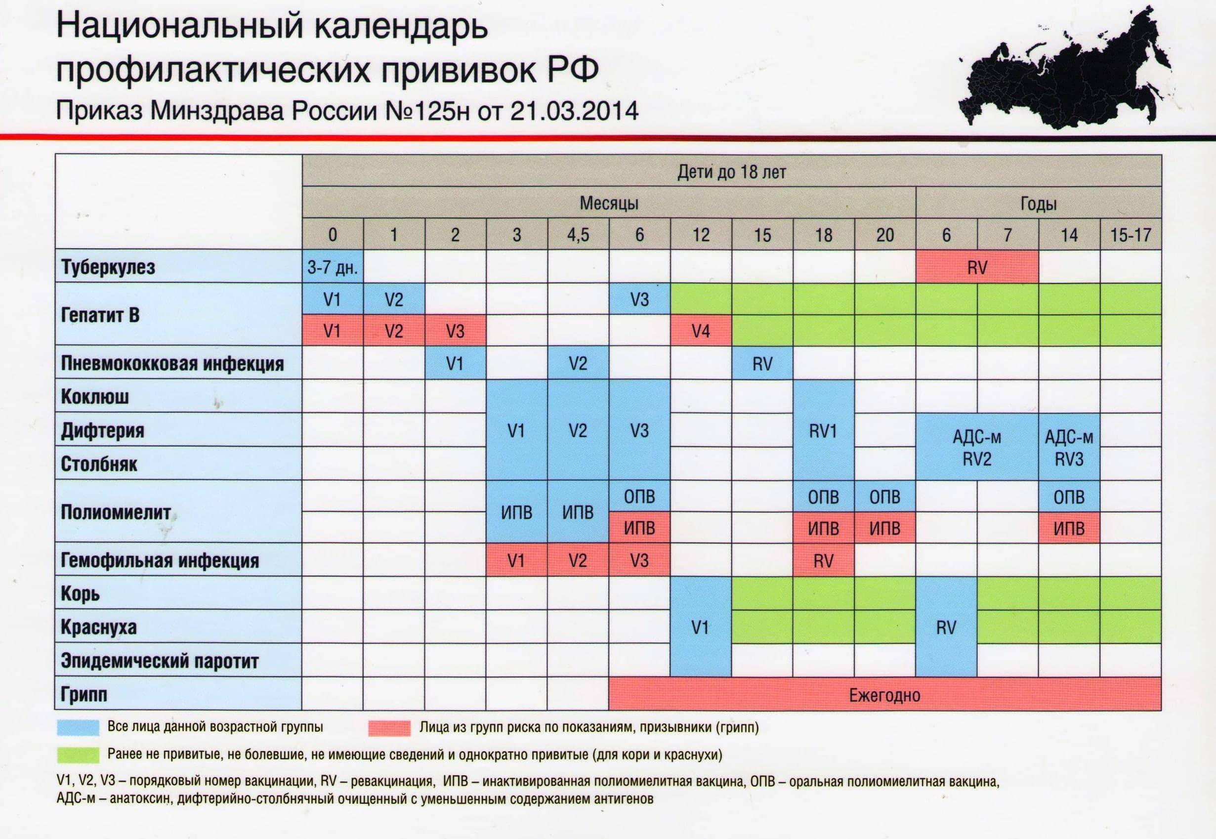 График прививок детям до года в россии