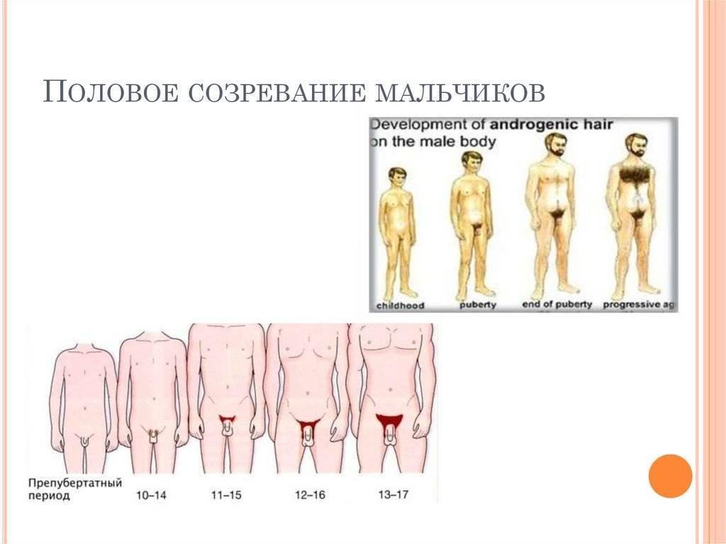 Нарушение полового развития у мальчиков - дифференцировка, клинические проявления