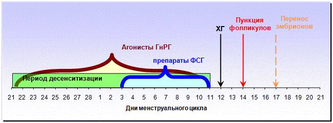 Пункция фолликулов при эко
