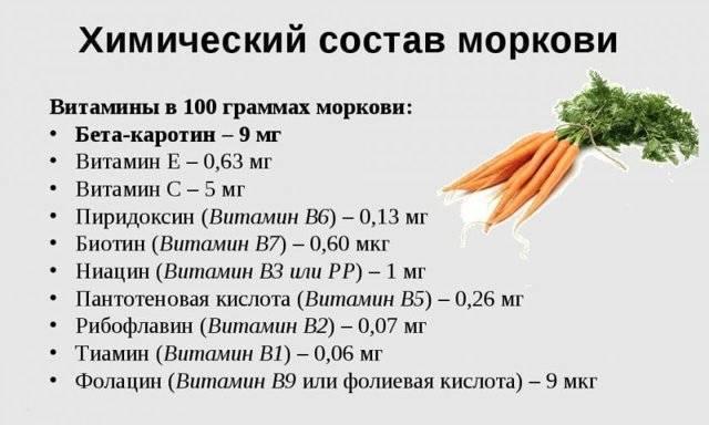 Морковь при грудном вскармливании: можно ли кормящей маме в первый месяц?