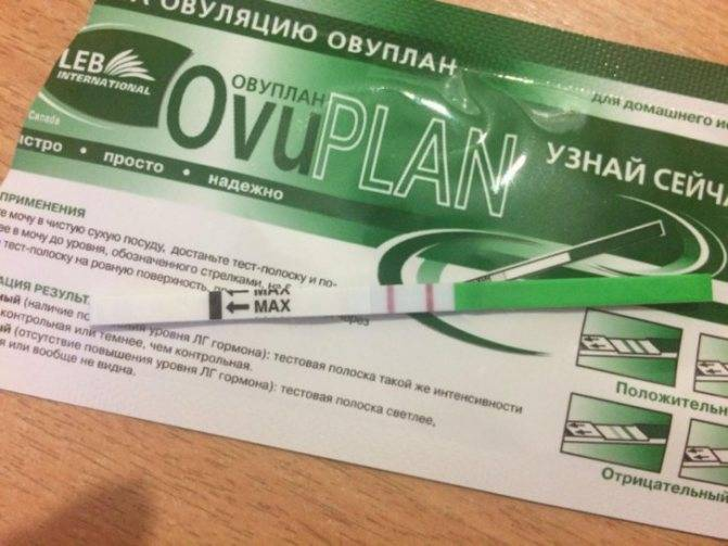 Тест на овуляцию Овуплан: инструкция по применению, аналоги и цена