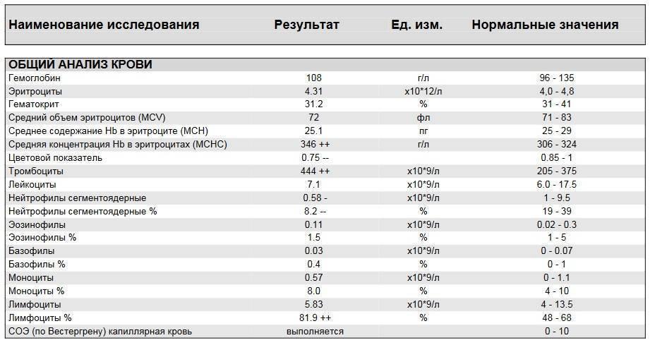 Повышены эритроциты в крови у женщин: причины, уровень, анализы