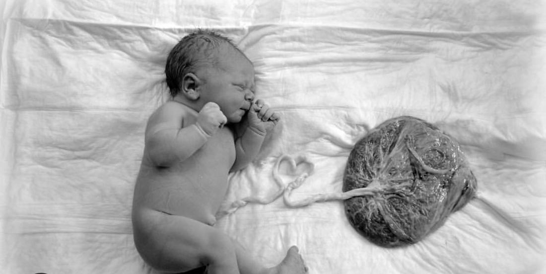 Зарождение новой жизни: как ребенок появляется в животе, каким образом он развивается в утробе матери по неделям?