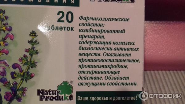 Шалфей при беременности: можноли применять внутрь, для полоскания иингаляций
