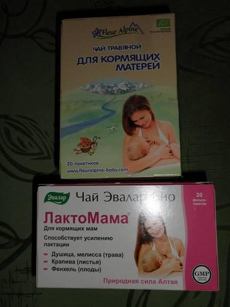 Чабрец - полезные свойства и противопоказания для женщин, мужчин и детей, можно ли при беременности и грудном вскармливании, рецепты