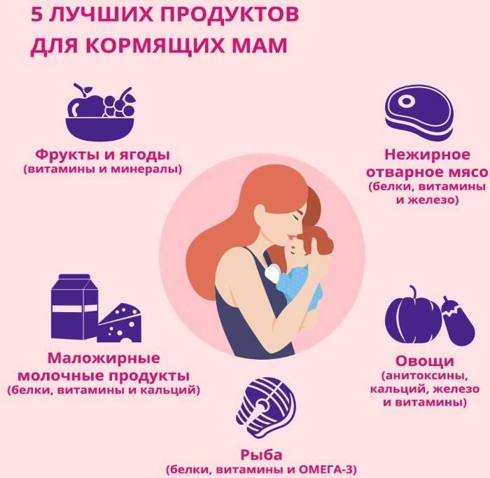 Продукты, повышающие лактацию грудного молока кормящей матери: список