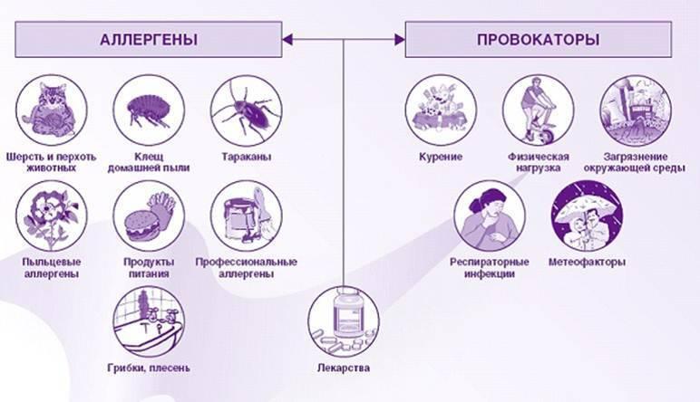 Признаки и методы лечения аллергического бронхита у детей