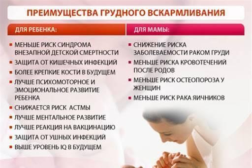 Плюсы и минусы грудного вскармливания для мамы и новорожденного
