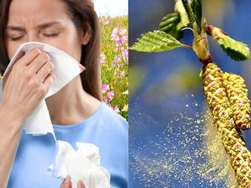 Симптомы весенней аллергии на цветение у детей