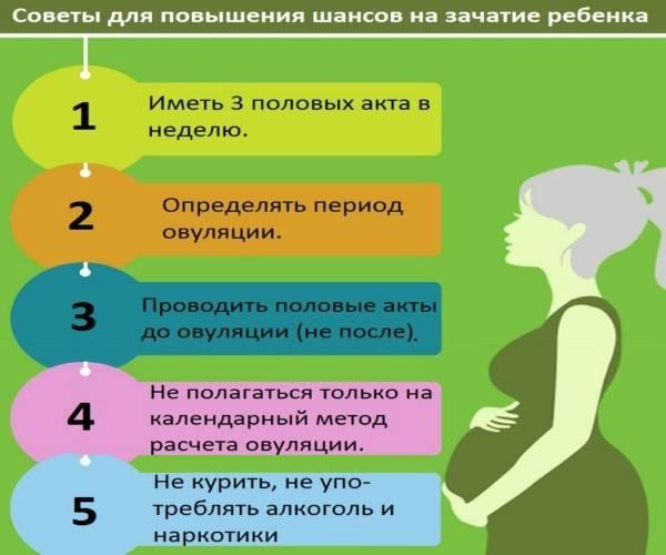 Как подготовиться к зачатию. шпаргалка для будущих отцов - урология - мужское здоровье - babyplan