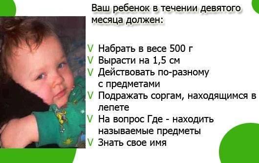 Что должен уметь ребенок в 7 месяцев: критерии развития мальчика, девочки | календарь развития | vpolozhenii.com
