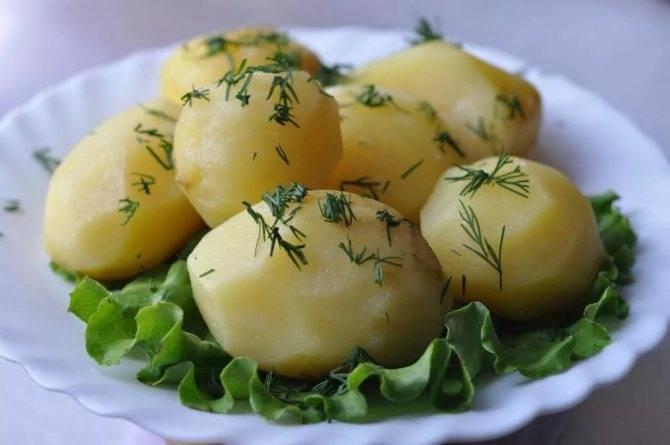 Тушеная картошка при грудном вскармливании