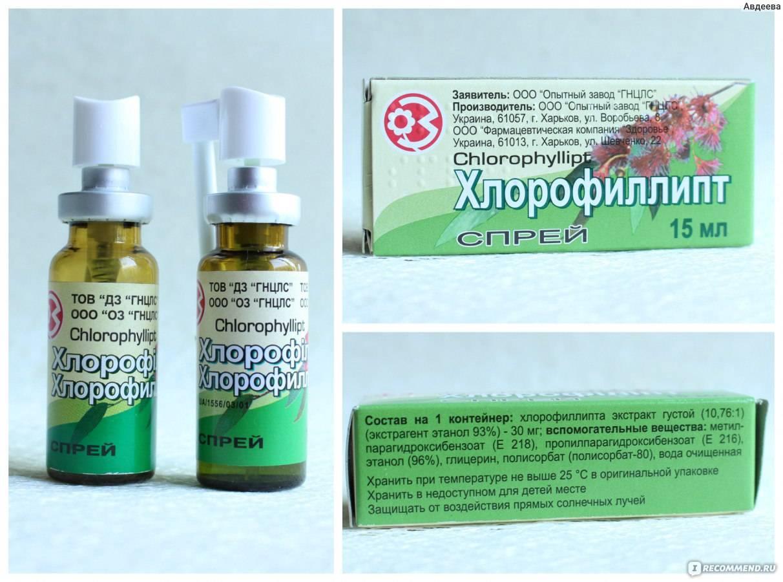 Как применять хлорофиллипт для полоскания горла