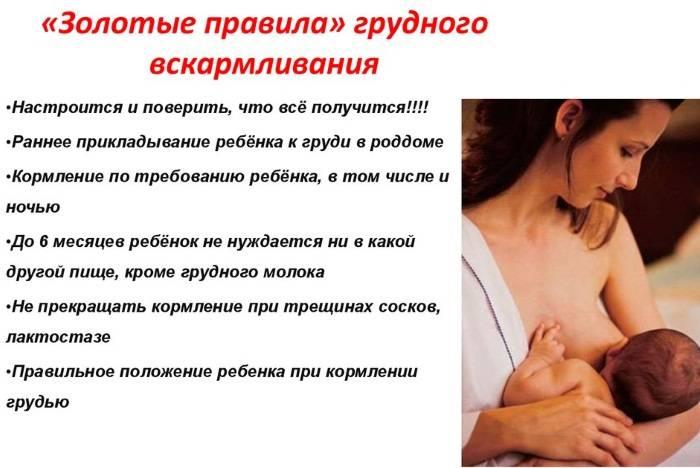 Продуло болит грудь у кормящей - заметки врача