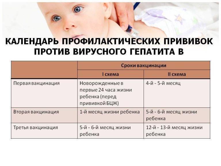 Прививка от гепатита В новорожденным и детям старше: побочные действия, график вакцинации