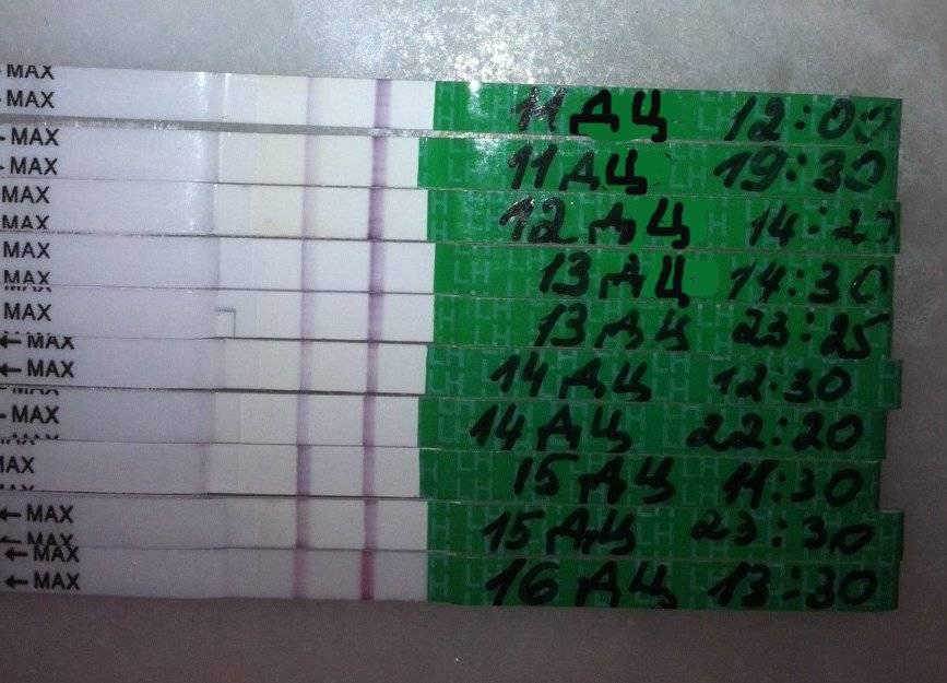 Тест до задержки на беременность (32 фото): покажет ли до месячных? на какой день после зачатия можно его делать и какой тест самый чувствительный? как определить беременность в домашних условиях до задержки?