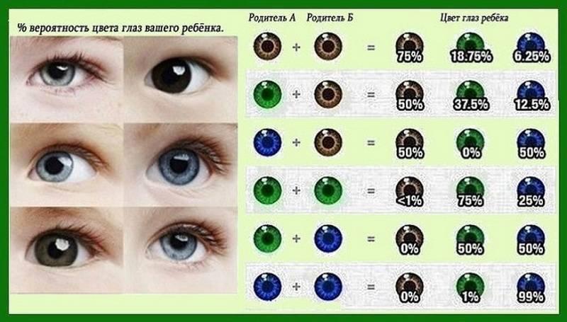 Когда у новорожденных меняется цвет глаз — топотушки