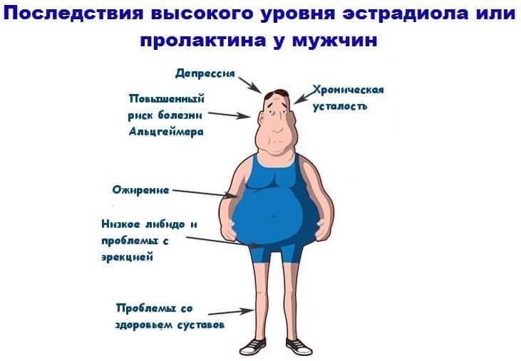Тестостерон при беременности у женщины: что делать, если он повышенный или пониженный?