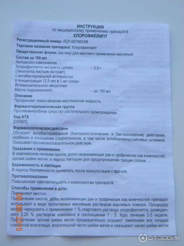 Спрей «хлорофиллипт» для детей: инструкция по применению, с какого возраста применять, отзывы