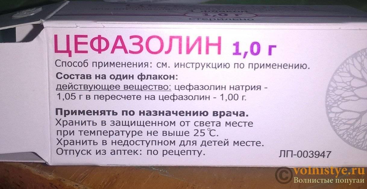 Цефазолин для уколов: инструкция по применению - простудные заболевания