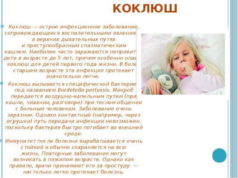 Коклюш у взрослых - симптомы и лечение атибиотиками и народными средствами