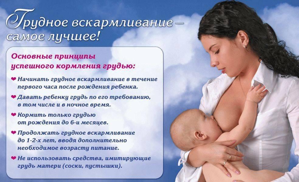16 принципов грудного вскармливания от всемирной организации здравоохранения