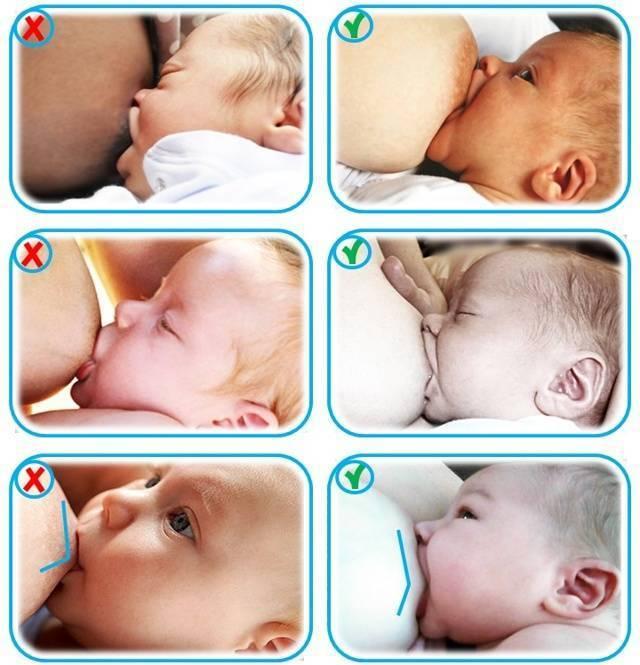 Как ухаживать за грудью кормящей маме?