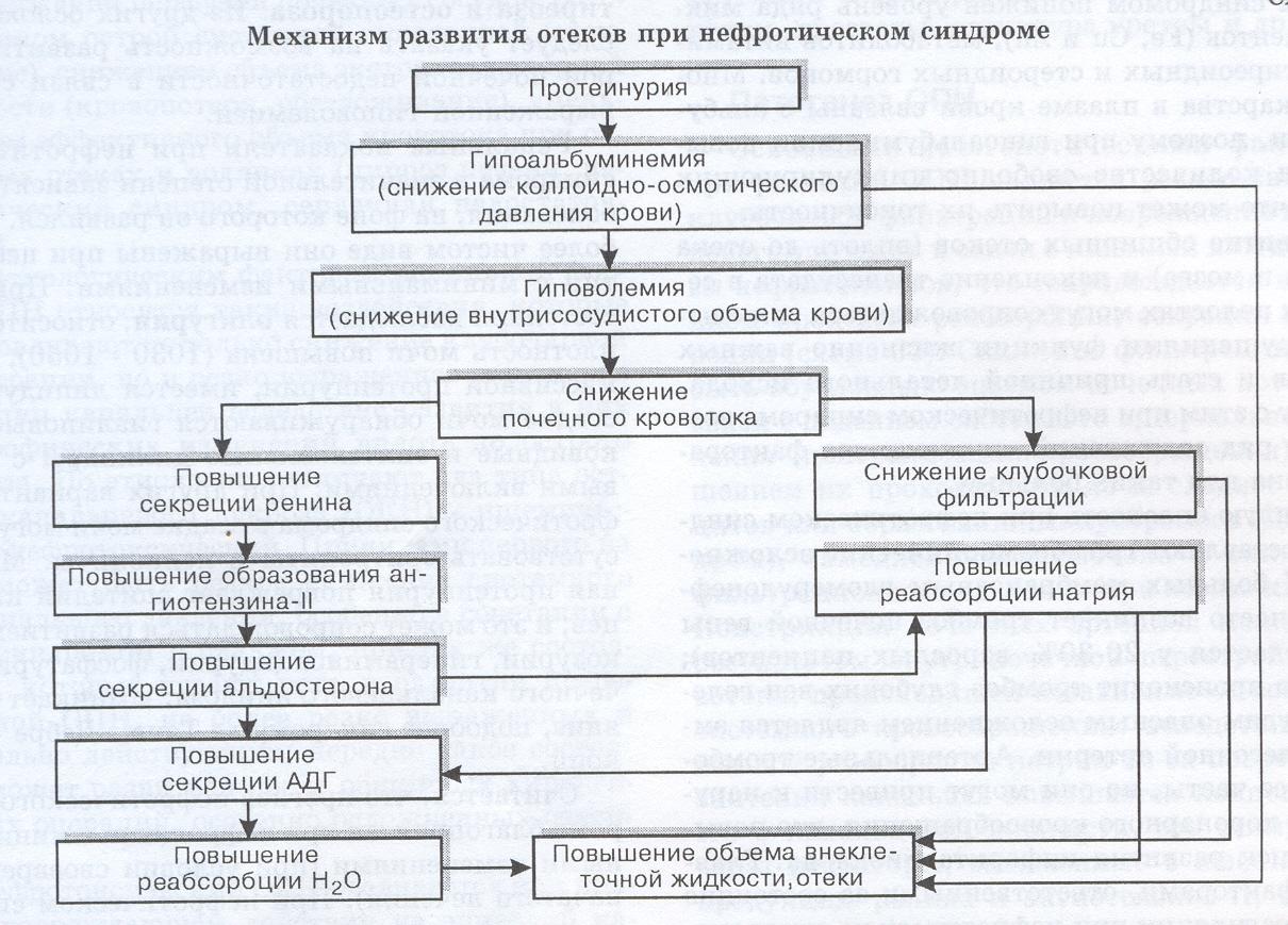 Нефротический синдром у детей: симптомы и лечение врожденного нефротического синдрома, причина