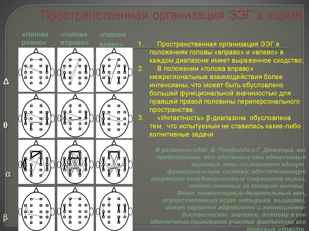 Расшифровка результатов и нарушения на энцефалограмме, что показывает ээг головного мозга у ребенка: нормы - все о суставах