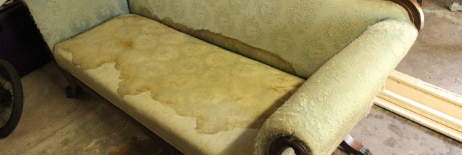 Как убрать запах и пятна мочи с дивана (кошачьей, собачьей и человека): эффективные средства и методы удаления