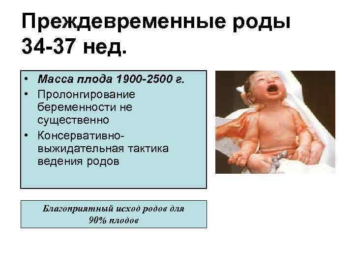 С какой недели плод считается жизнеспособным, и ребенок может выжить при родах? - wikidochelp.ru