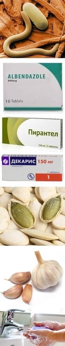 Таблетки от глистов для детей: лекарства, средства и препараты для профилактики и лечения паразитов