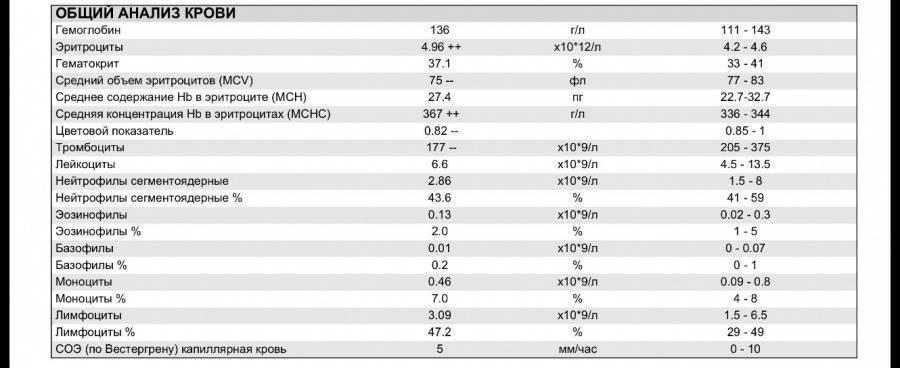 Ширина распределения эритроцитов ниже нормы что это значит