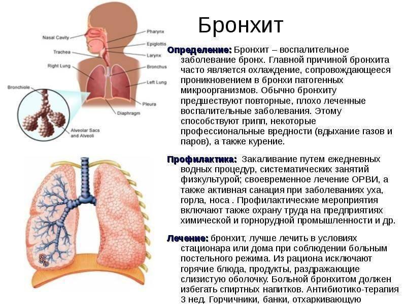 Трахеобронхит: лечение у взрослых, как вылечить ингаляциями и антибиотиками