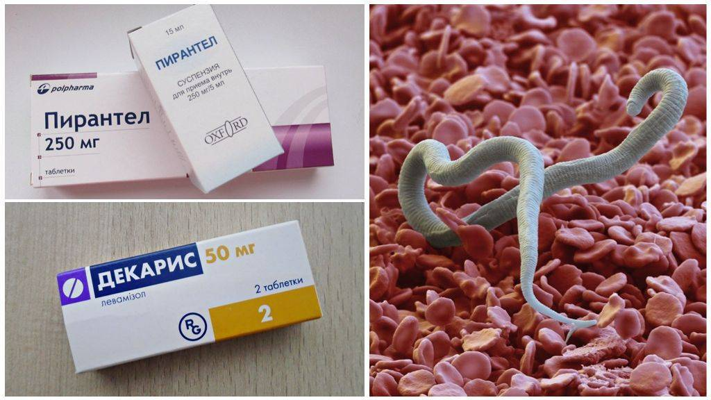 Таблетки от глистов для детей. глисты у детей – лечение, препараты
