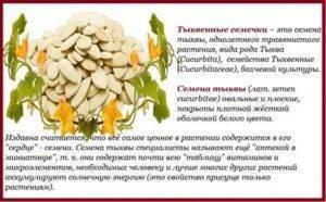 Тыквенные семечки: польза и вред для организма. как принимать