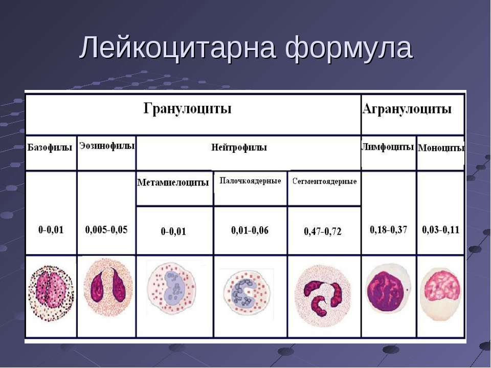Нормы общего (клинического) анализа крови у детей в таблицах