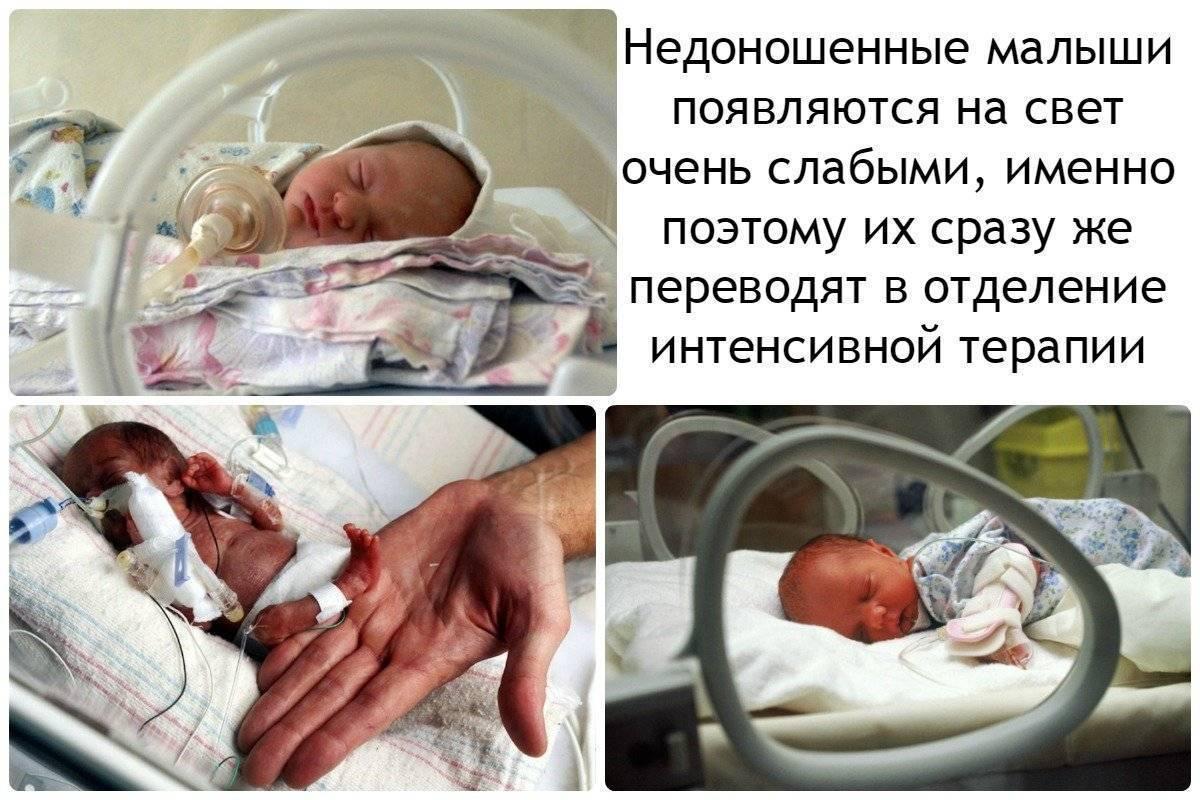 Сколько дней длится беременность у женщины со дня зачатия: сколько недель до родов – считаем с момента зачатия человека до его рождения