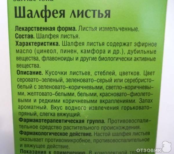 Шалфей при планировании беременности: как принимать? / mama66.ru
