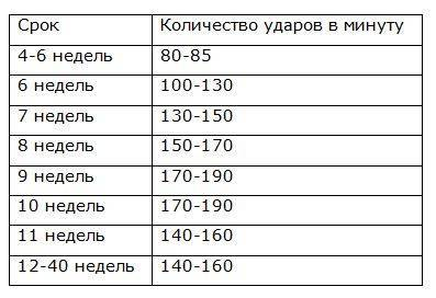 Можно ли определить пол ребенка по сердцебиению / mama66.ru