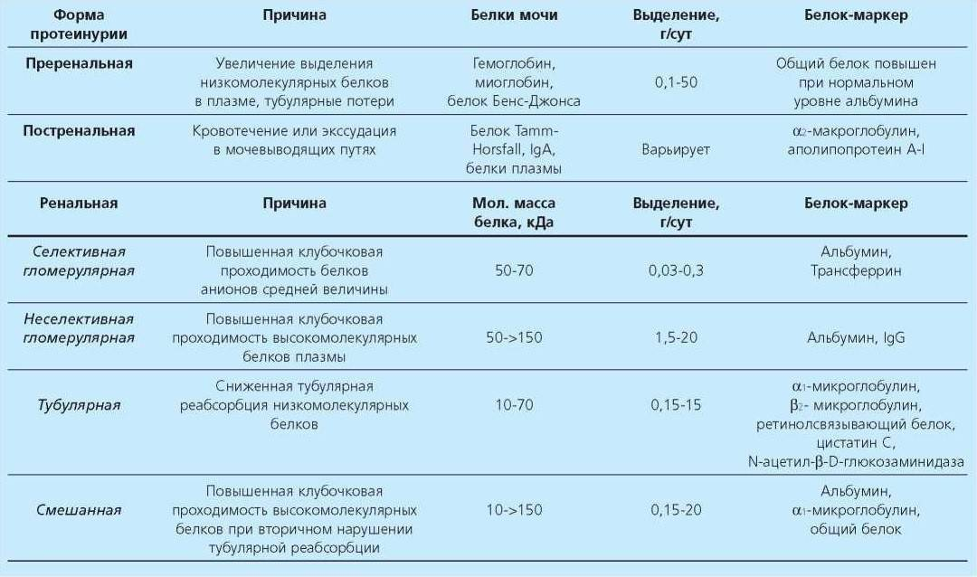 Белок в моче у ребёнка: причины повышения и нормальные значения (таблица)