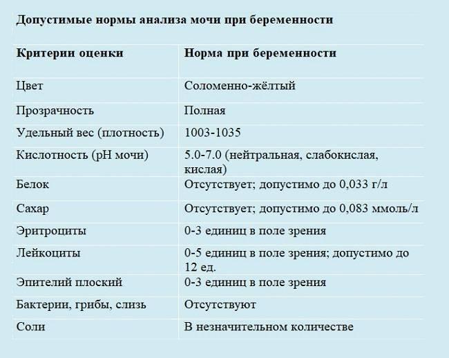 Анализы при беременности по триместрам: список, расшифровка