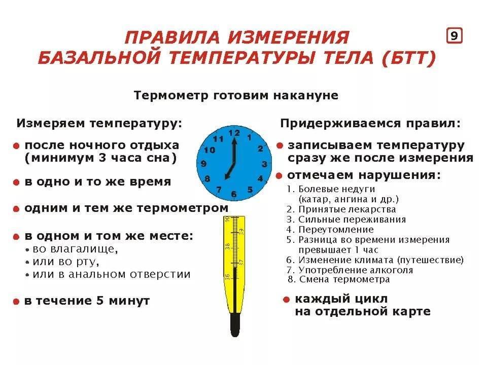 Когда и как измерить базальную температуру тела для определения беременности?