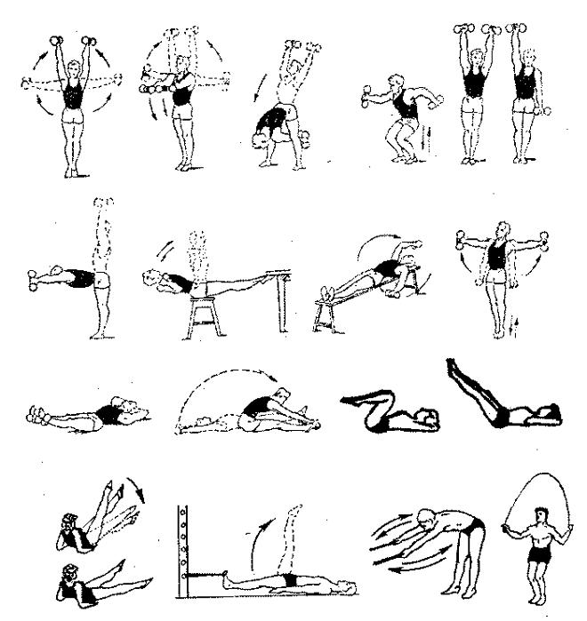 Лфк при сколиозе 1 и 2 степени у детей: комплекс гимнастических упражнений в домашних условиях - все о суставах