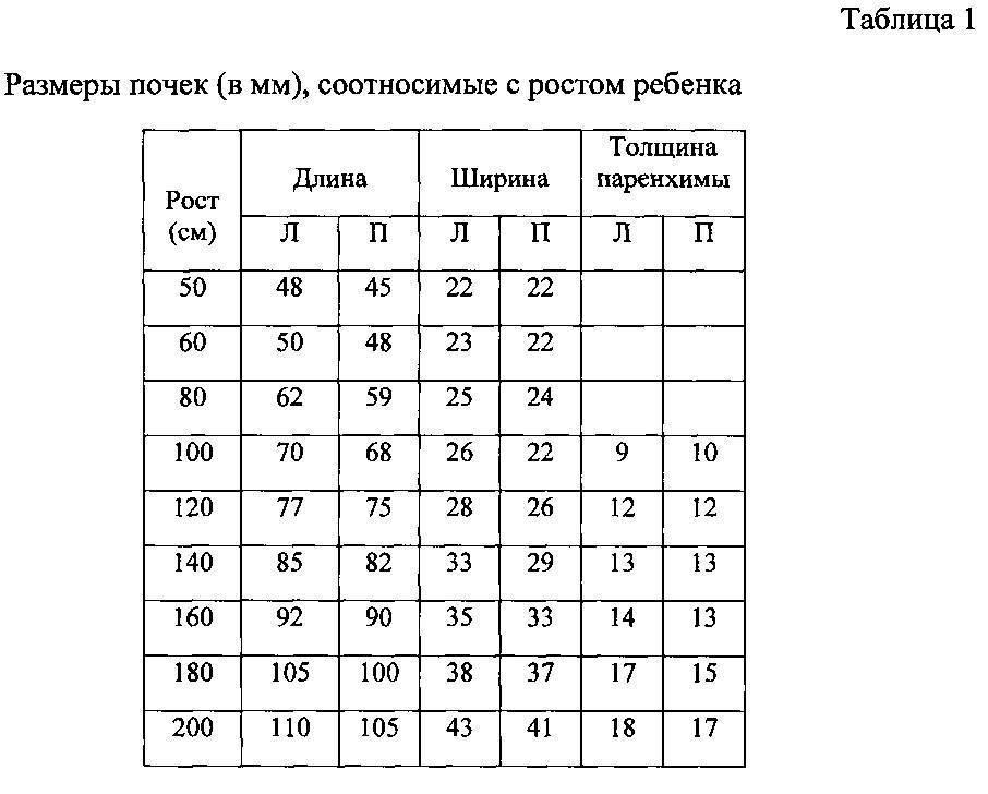 Размеры селезенки в норме у взрослых по узи: показатели при расшифровке данных