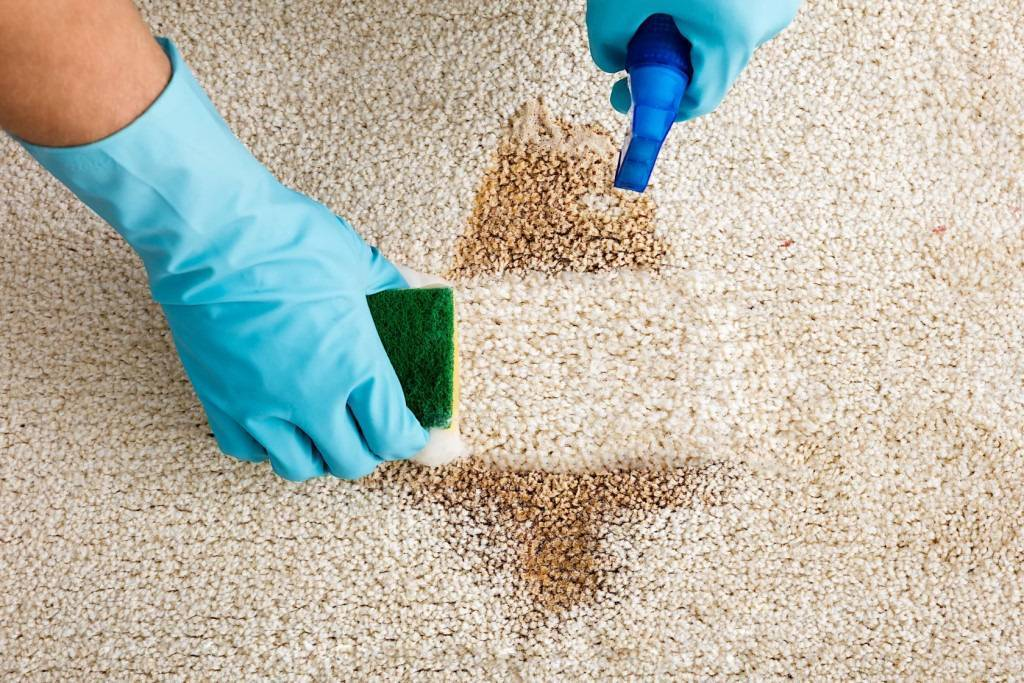 Как избавиться от запаха мочи на ковре в домашних условиях ?