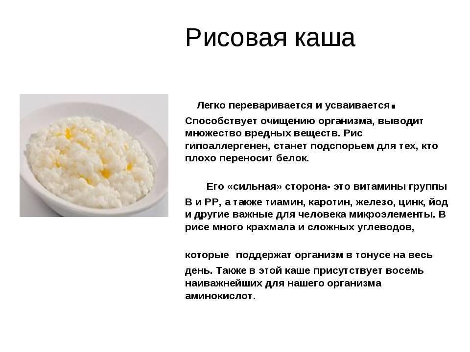 """Как варить рисовую молочную кашу:  рецепты для детей и взрослых — журнал """"рутвет"""""""
