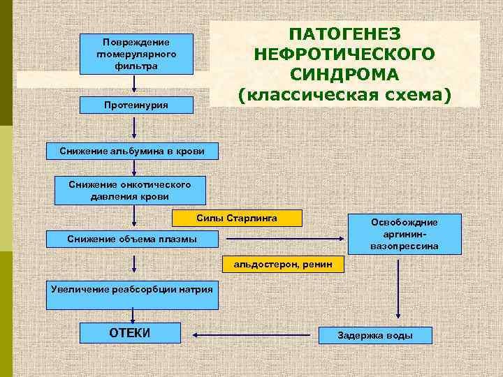 Нефротический синдром у детей: причины, симптомы и методы лечения заболевания