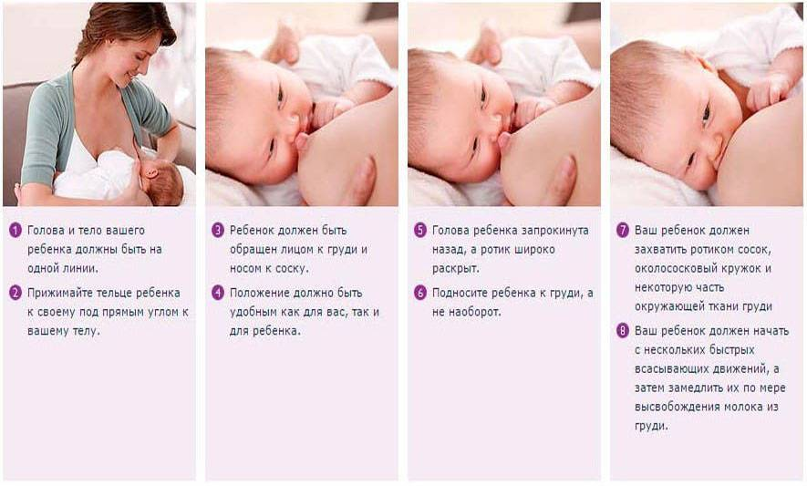 Симптомы заболеваний, диагностика, коррекция и лечение молочных желез — molzheleza.ru. как подготовить грудь к кормлению ребенка: уход за сосками после родов и перед грудным вскамрливанием